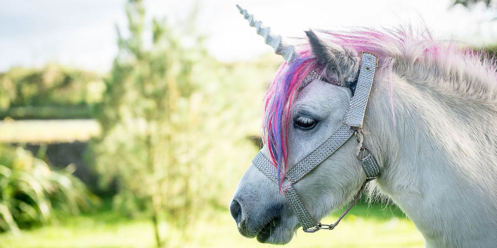 3 magical ways to celebrate #UnicornDay