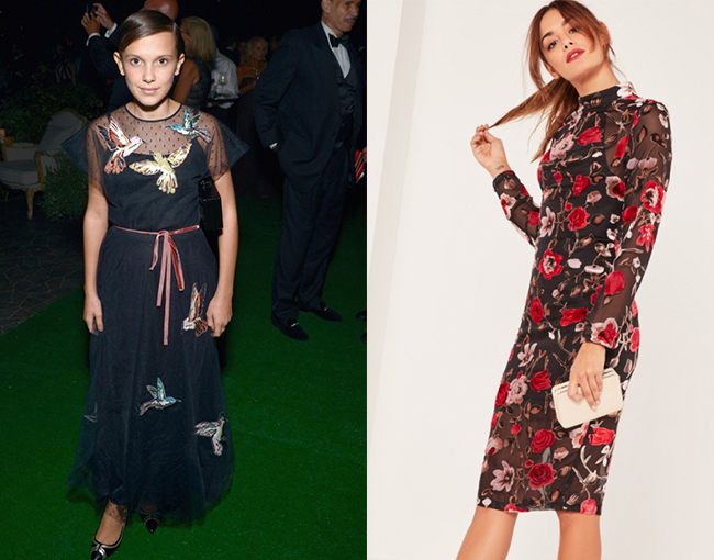 Millie Brown Embroidered Dress