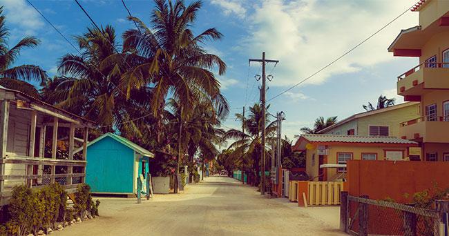 Article_GeckosAdv_Belize