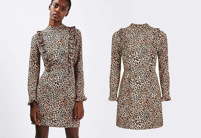 Leopard-Dress-Article